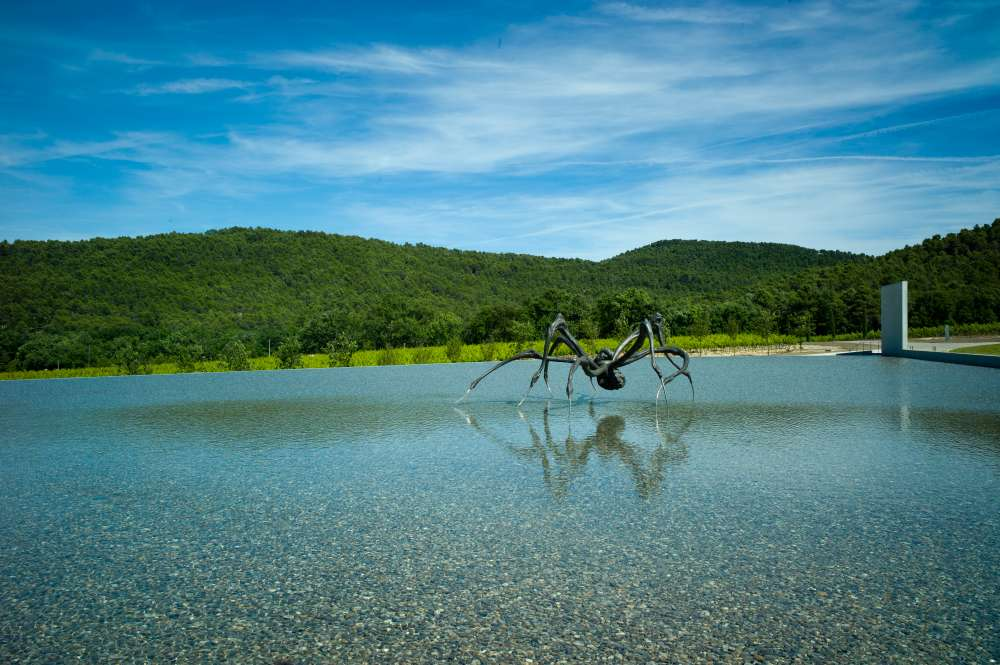 Louise_Brougeois_Spider_Chateau_La_Coste